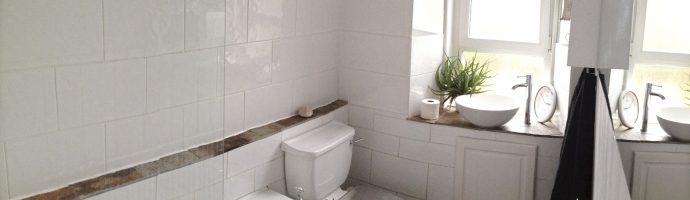Bathroom Completion